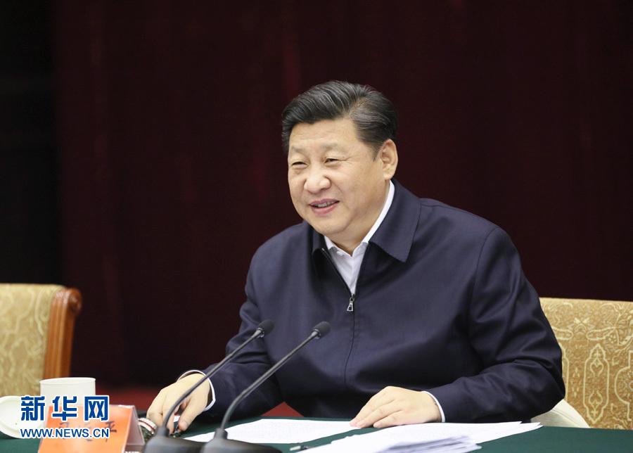习近平:长江经济带不搞大开发